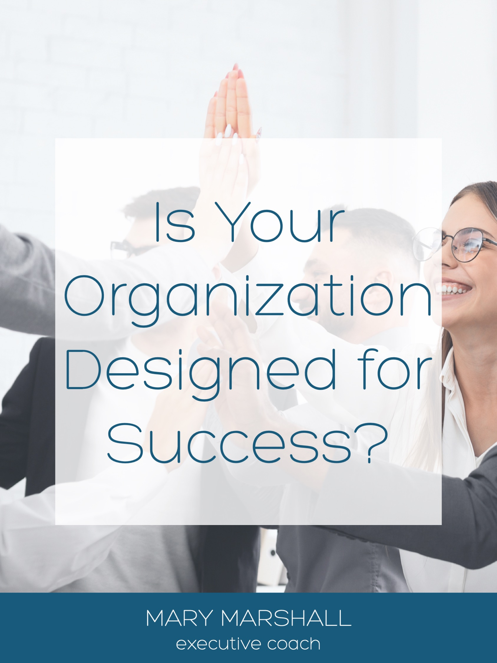 Is Your Organization Designed for Success?
